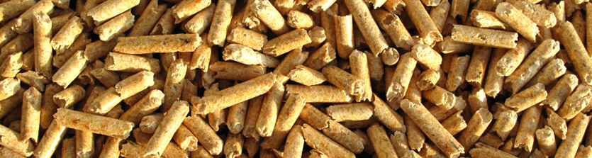 Biomass Pirbright Renewable Energy